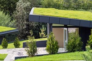 Zelená střecha je terno