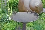 Ke koupeli ptáky lákají jejich kovoví bratři.