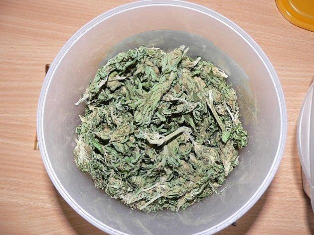 Policisté zadrželi a obvinili dvanáct dealerů a uživatelů marihuany, kteří prodávali vloni a letos takzvaný skunk v Bruntále a Rýmařově.