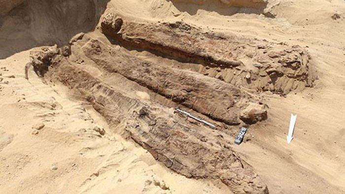 Nalezené mumie v egyptské Sakkáře.