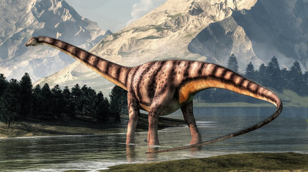 Zatímco někteří sauropodi byli poměrně velcí – i přes 10 metrů délky, součástí rozsáhlé rodiny byli i lehce stavění jedinci ne větší než naše koza.