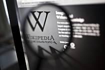Internetová encyklopedie Wikipedia.
