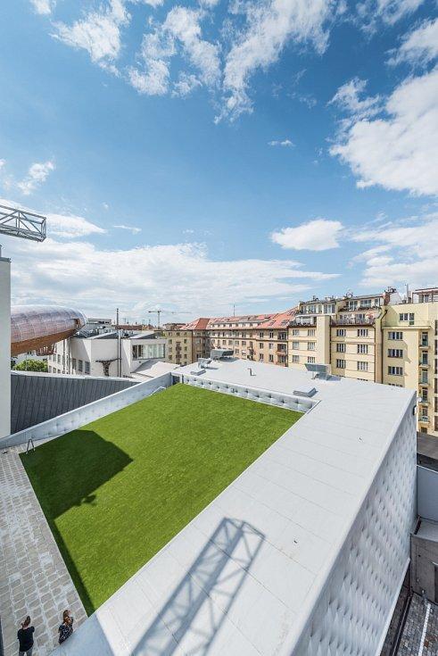 Areál DOX+, louka na střeše slouží k relaxaci a jako hlediště-amfiteátr pro akrobatický tanec.