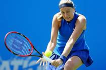Petra Kvitová na turnaji v Eastbourne.
