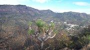 Gran Canaria. Okolní skály jsou pozůstatkem obřího sopečného kráteru.