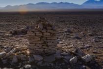 Saywas v poušti Atacama