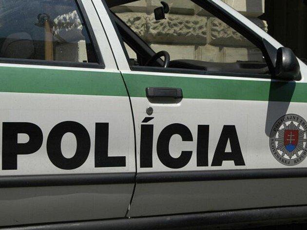 Slovenská policie v sobotu rozehnala zhruba 200 účastníků protiromského protestu, který v Šarišských Michaľanech uspořádalo extremistické sdružení Slovenská pospolitost.