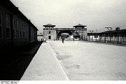 Apelplac v Mauthausenu.