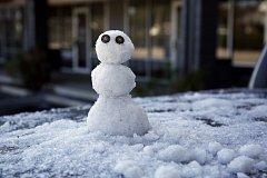 Sněhová nadílka na Floridě