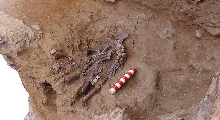 Další neandertálcovy kosti nalezené v jeskyni Šánidar