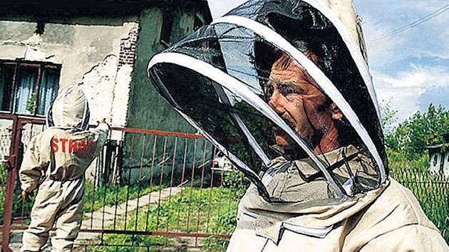 V KUKLÁCH PROTI ŽIHADLŮM. Polští hasiči v kombinézách a kuklách likvidují hnízda sršňů. U polského města Letnica likvidovali letos muži ve speciálních oblecích na 120 hnízd.