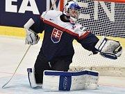 Brankář Slovenska Ján Laco.