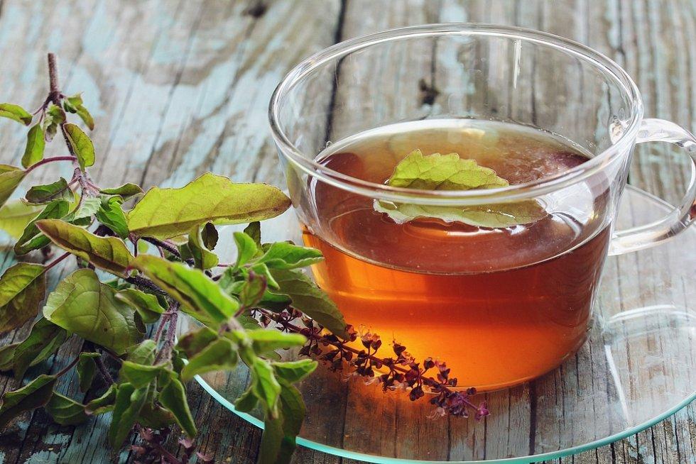Čaj z bazalky tulsi