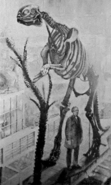 Sestavená kostra hadrosaura, kterou v roce 1868 složil Benjamin Waterhouse Hawkins jako první dinosauří kostru na světě
