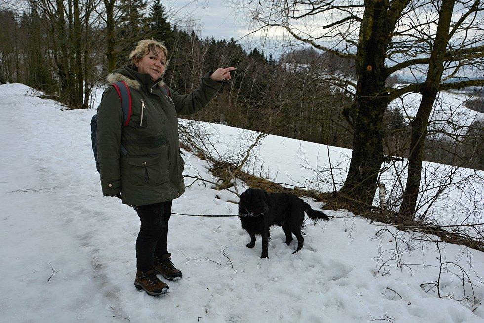 Pulčínské ledopády lákají každoročně na neobvyklou podívanou. Lidé je berou útokem a nerespektují pravidla CHKO Beskydy. 5. února 2021 byla přístupová cesta zledovatělá. Za krásami ledu vyrazila Eva Štěpáníková.