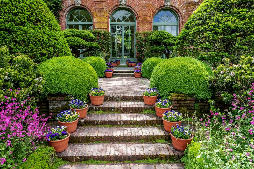 Při výběru rostlin berte zřetel nejen na vzhled vaší zahrady, ale také na to, jak bude plot ovlivňovat okolí.