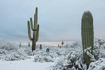 Pouštní oblasti na jihozápadě USA zasypal sníh