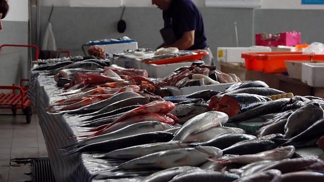 Mořských ryb Češi sní třikrát méně, než je evropský průměr.