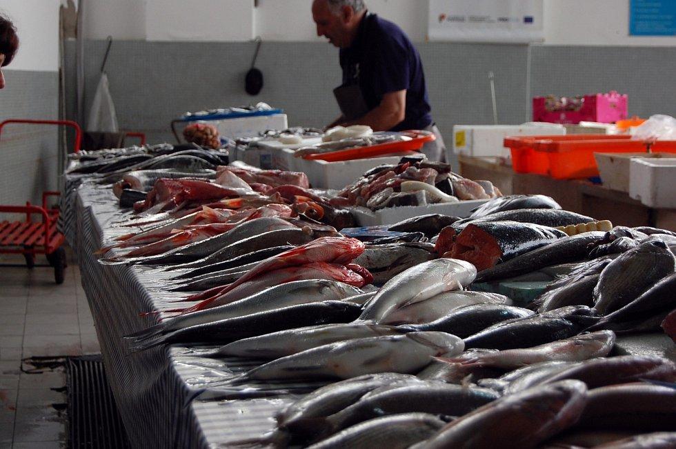 Mořských ryb ale Češi sní třikrát méně, než je evropský průměr.