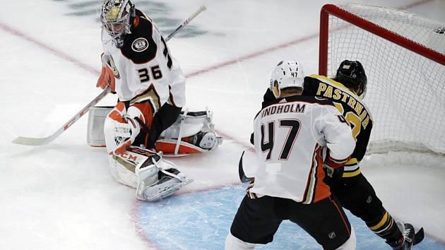 Hokejista Bostonu David Pastrňák (vpravo) překonává brankáře Anaheimu Ducks Johna Gibsona (vlevo).
