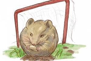 Veselá: zápas proti myším
