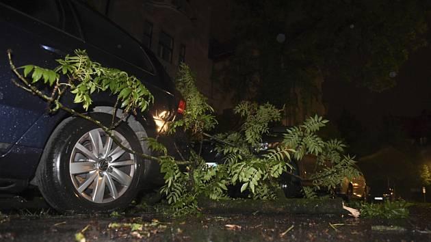Strom spadlý na automobil během prudké noční bouře. Ilustrační foto