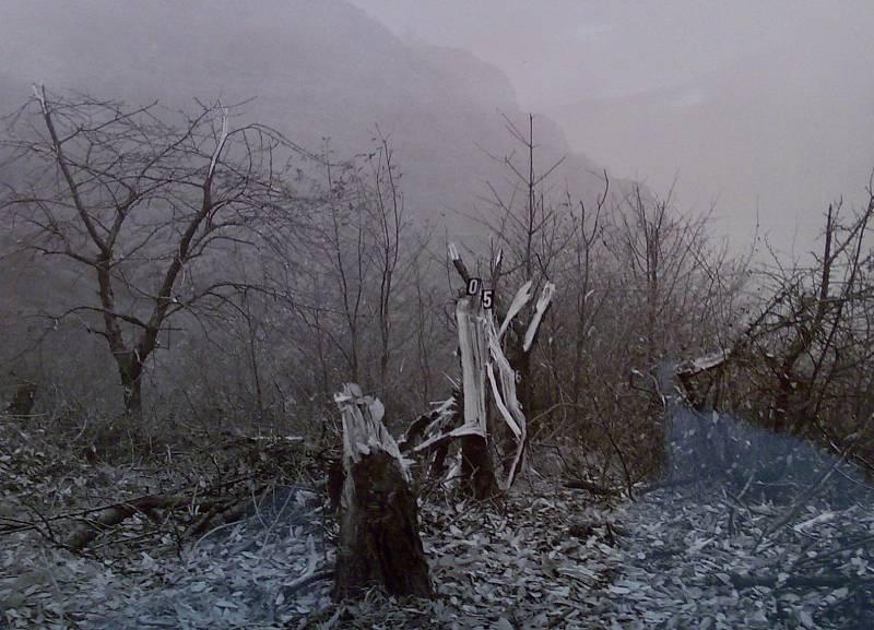 Suchdol, 30. října 1975. Stromy, které letoun přerazil při nezdařeném přiblížení, zpečetily jeho osud