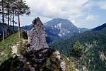 Rakouský národní park Kalkalpel je až ze čtyř pětin pokrytý lesy.