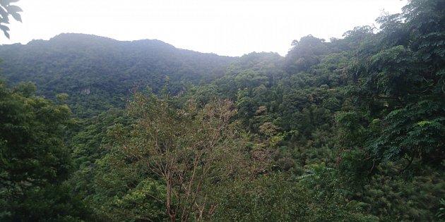 Příroda na Tchaj-wanu