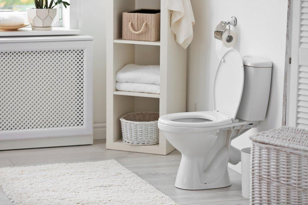 Při zácpě se většinou dlouho trápíme na toaletě, až nakonec sáhneme po prostředcích na vyprázdnění stolice