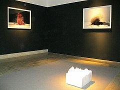 SNÍMKY NEMAJÍ PŘESNĚ DOKUMENTOVAT TVAR, zato mají působit jako obraz času, říká o vystavovaném souboru autor Evžen Šimera.