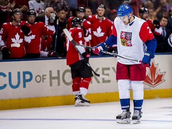 Zbyněk Michálek při utkání Světového poháru s Kanadou