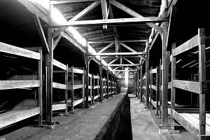 Koncentrační tábor Auschwitz-Birkenau