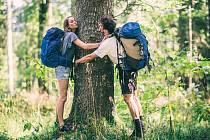 """Není třeba stromy v lese objímat, léčivě na nás působí i """"pouhá"""" procházka v jejich stínu."""