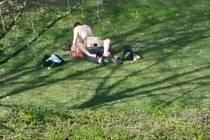 Milenci se oddávali sexu za bílého dne v parku uprostřed města Crawley.