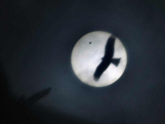 Tisíce astronomů, ale i amatérských pozorovatelů sledovali přechod Venuše přes sluneční kotouč. Snímek z Indie.