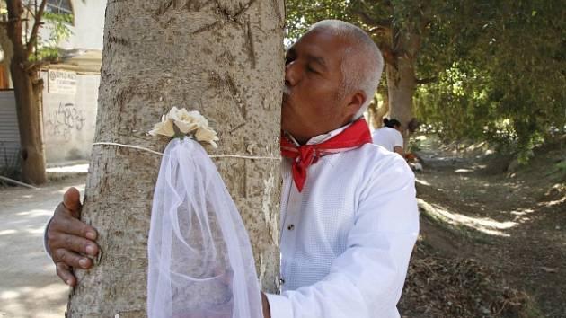 Projekt Marry A Tree