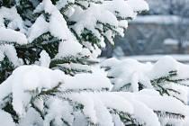 Sníh - Ilustrační foto