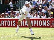 Roger Federer se raduje z vítězství ve finále turnaje v Halle.