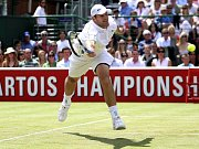 Roger Federer během seminále Wimbledonu proti Maratu Safinovi.