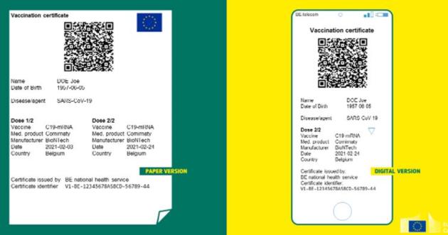 Vizualizace covid pasu.