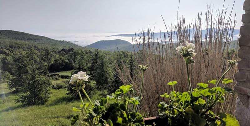 Vitalba je samotka vkopcích. Izolace uprostřed přírody sbazénem by tedy mohla být naší výhodou, myslí si Lenka Gallo.