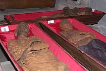 Osmatřicet mumií se dočasně přestěhovalo z vyhlášených katakomb v Klatovech do provizorních prostor v jezuitské koleji. Důvodem je rekonstrukce katakomb, která přijde na více než dvacet milionů korun.