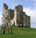Trosky hradu Mirow