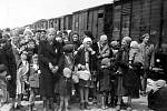 Příjezd do Auschwitzu