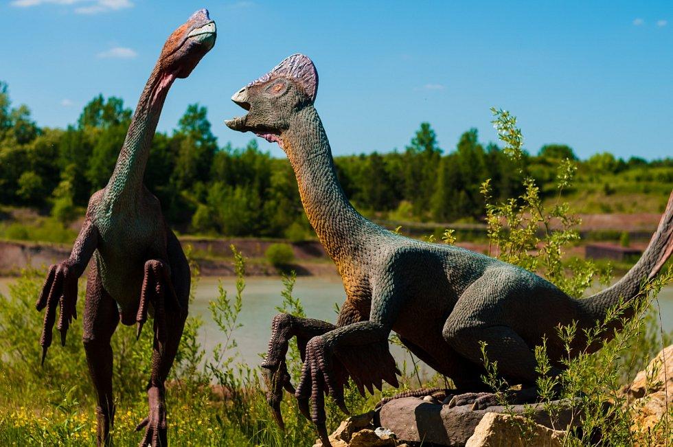 Dinosauři se teoreticky mohli rozmnožovat stejným způsobem jako dnešní ptáci