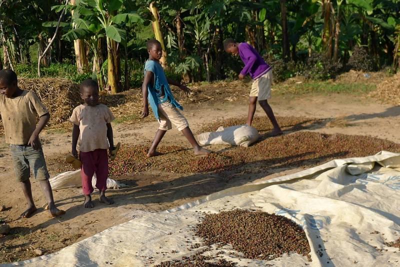 Manželé Mácovi svou aktivitou pomáhají zlepšovat život ugandským farmářům.