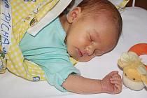 Cestou z Uhlířských Janovic do kolínské porodnice spatřil světlo světa 5. prosince 2011 Matěj Pícha. Měřil 49 centimetrů a vážil 3300 gramů. Porod v autě zvládla maminka Iveta za pomoci tatínka Petra a pětileté Aničky.