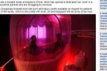 Za zhruba 108 eur na noc si dvojice mohou pronajmout pokoj, který je vybaven pohovkou, lůžkem i erotickými pomůckami.