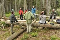 Ekologičtí aktivisté začali 15. července blokovat lokalitu Ptačí potok u šumavské Modravy, aby zabránili kácení kůrovcem napadených stromů.